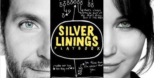 silver linings playbook 2012 threesixfivefilm